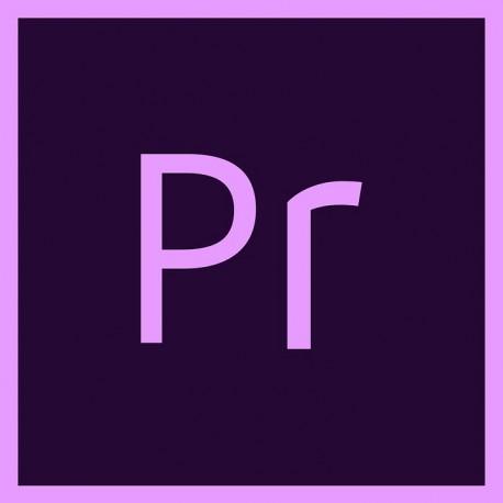 courses adobe premiere pro