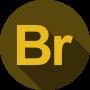 Adobe Bridge courses for beginners
